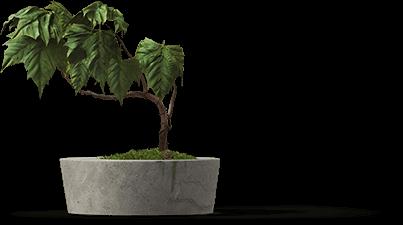 kurumsal web tasarım - bb88b plant - Kurumsal Web Tasarım Hizmeti